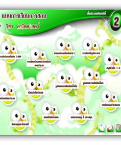ซอฟต์แวร์ CAI คณิตศาสตร์ ป2-1