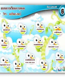 ซอฟต์แวร์ CAI คณิตศาสตร์ ป6-1