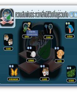 ซอฟต์แวร์ CAI วิทยาศาสตร์ ม3-1