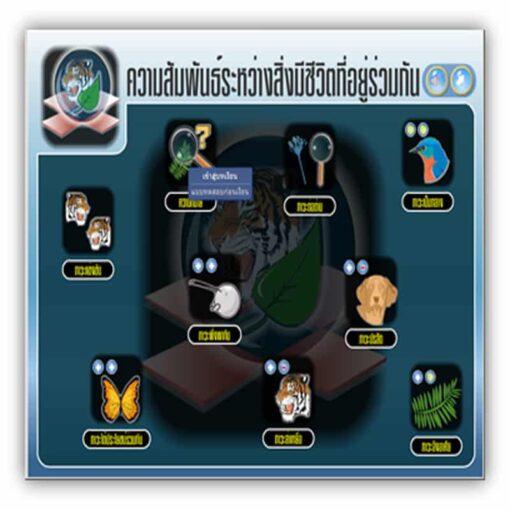 ซอฟต์แวร์สื่อการเรียนการสอน วิทยาศาสตร์ ม3 แบบ CAI