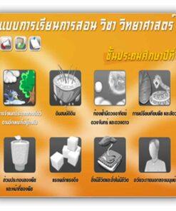 ซอฟต์แวร์ CAI วิทยาศาสตร์ ป1-3