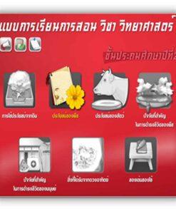 ซอฟต์แวร์ CAI วิทยาศาสตร์ ป2-3