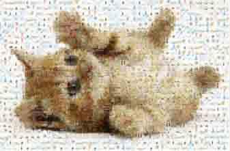 ภาพแบบ mosaic